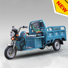 650W three wheel adult electric tricycle for cargo