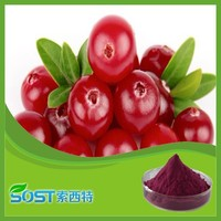 Best Selling Factory Supply price cranberries