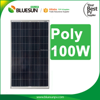 Bluesun high quality pv poly 100w panel solar system for home use