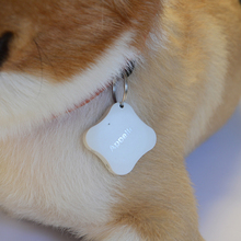 china supplier mini gps tracking device for animal/car/key/pets gps tracker