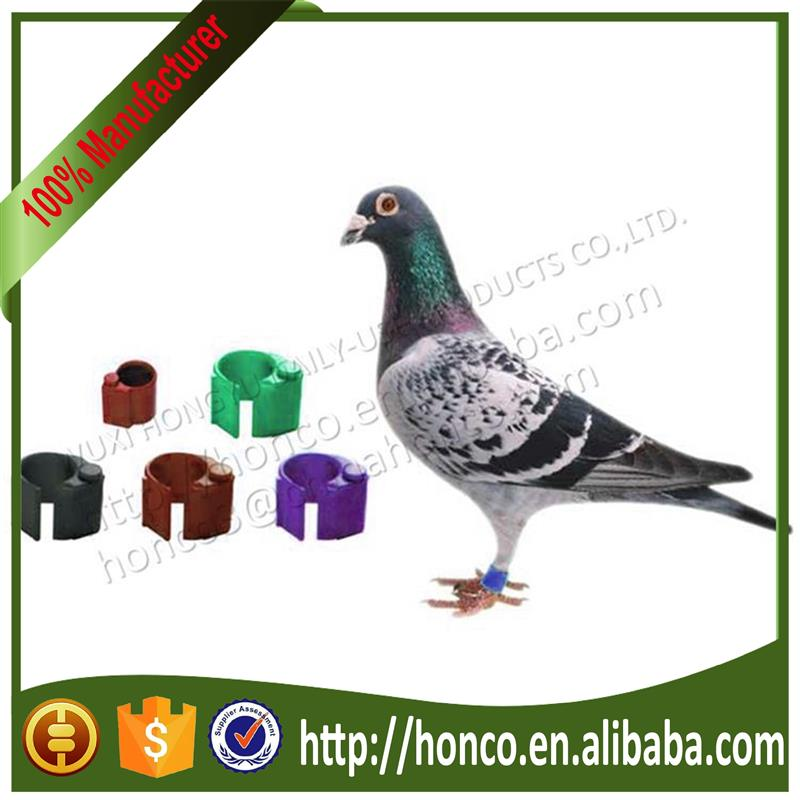 2015 New Products Birds rings Pigeon rings