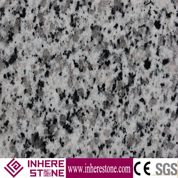 Wholesale cut to size grey granite slab