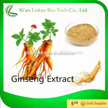 Manufacturer sales panax ginseng extract powder