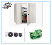 Wholesale!! fish freezing room, deep freezer cold room, fruits cold storage room