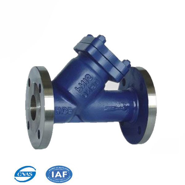 DN150 WCB duplex flange ends Y strainers for sewage water