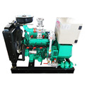 Water cooled yangdong gas generator 8kw to 50kw