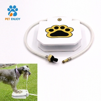 Custom New Design Paw Print Operated Activated Automatic Auto Outdoor Large Big Dog Drink Water Game Toy Feeder Fountain for Pet