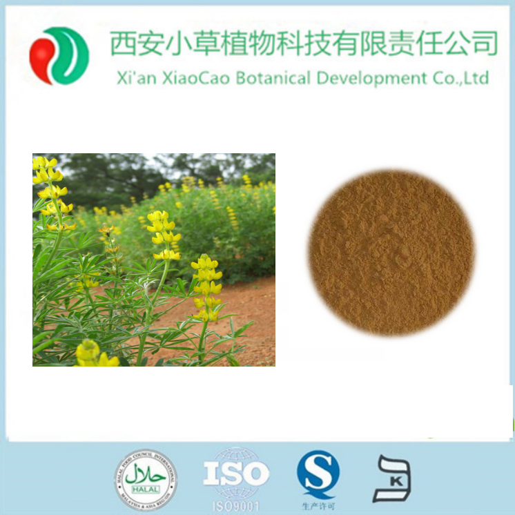 High quality Organic Sweet Red Clover Extract for antibiotic