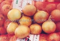 shandong onion exporters in china