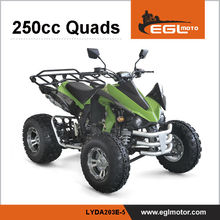 EEC 250cc Four Wheel Motorcycle 250cc