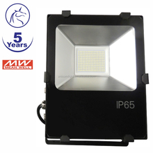 Top Seller Dimmable Plug In Sensor IP65 waterproof 50 Watt Led Flood Light With MW Driver