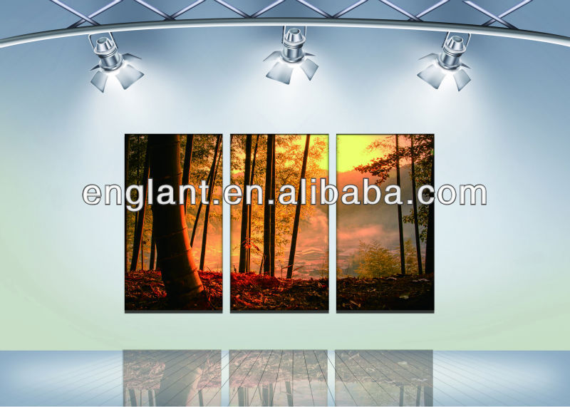 high quality gallery wrap canvas with factory direct sale