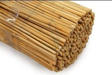 natural rolled cane reed screen