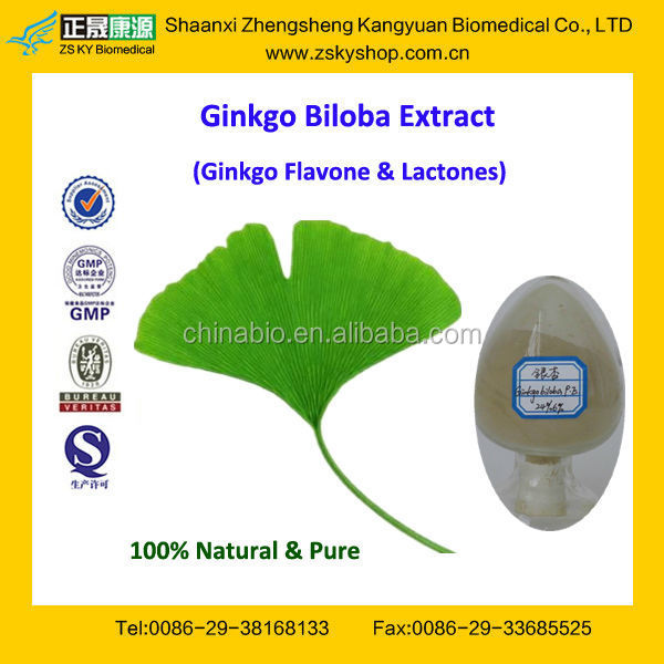 GMP Factory Supply High Quality Extracts of Ginkgo Biloba
