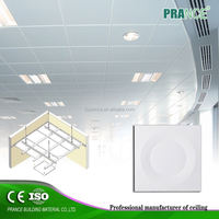 SGS Certificated decorative outdoor ceiling material