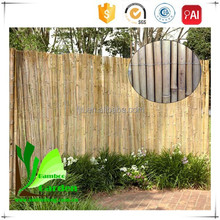 Natural Wood Outdoor Privacy Screen