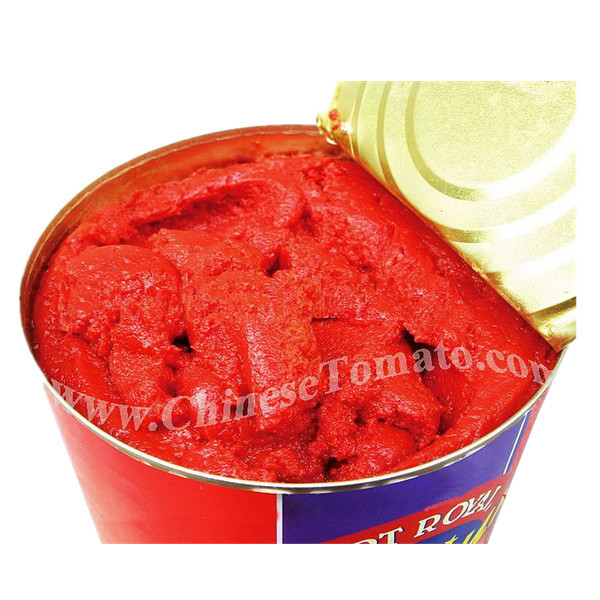 Canned SALSA Tomato Paste size 70g -4500g 28-30 in brix