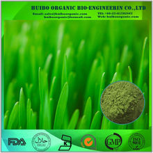 Green barley / barley grass powder