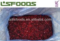 IQF frozen lingonberry for cake baking