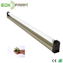 EDJ ETL T5 24W 2' Strip/Reflector Fixture with Lamp