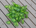 artificial leaves vine, artificial garland