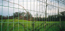 high quality welded wire mesh/ fence panels / safety mesh fence