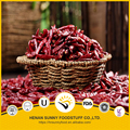 Red chilli pods stem natural air dried processing