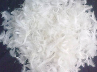 Bulk wholeale washed 2-4cm white duck feathers for sale