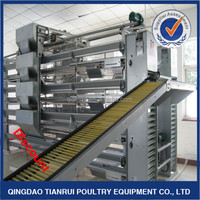 Automatic H types galvanized Q235 steel layer poultry rearing cages