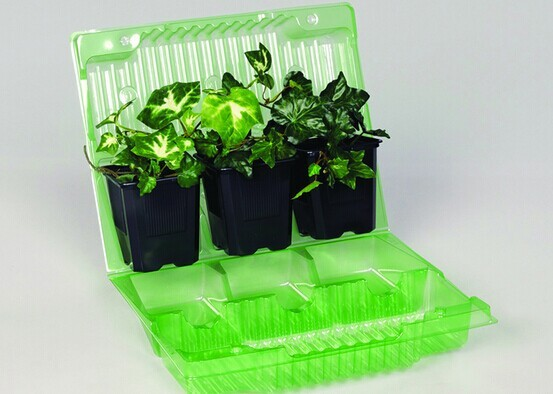plastic recyclable tree containers for sale blister packaging for plants