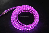 Economic IP65 RGBW 30leds LED Round 2lines rainbow rope led effect light