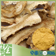 Free Sample 100% Natural Dong Quai Extract, Angelica Sinensis Extract