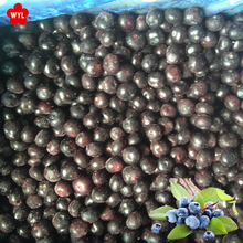 Hot sales iqf frozen blueberry with best price