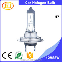 wholesale car bulb h7 12v 55w halogen lamp 55w 24v 70w 100w for car headlight