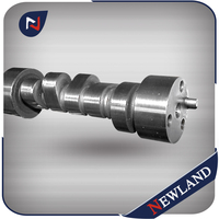 Factory price for chilling Cast grinding Camshaft for AUDI VW OE BD059109022BD racing camshaft