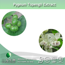 100% Pure Pygeum Africanum Total Sterols Extract in fine powder