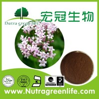 Factory Supply Top Quality Valerian Root Extract