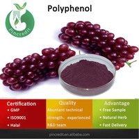 Grape Seed Extract/Pure Grape Seed Extract/Polyphenol