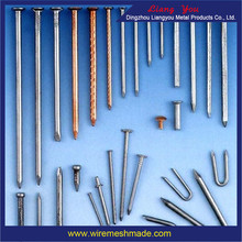 Iron nail common nail / Common Wire Nails /Pallet Coil Nail