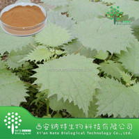 New arrived Stinging Nettle Extract Powder Beta Sitosterol 40% CAS: 83-46-5