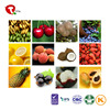 Dried fruit Dried food packaging bag wholesale freeze dried fruit and vegetable