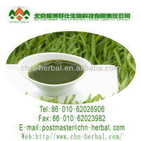 50:1 organic extract powder wheatgrass juice
