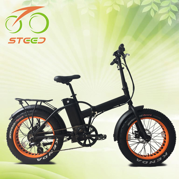 hot sale 48v brushless dc electric bike for snow