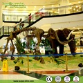 Shopping Mall Ornament Animal Fossil Display