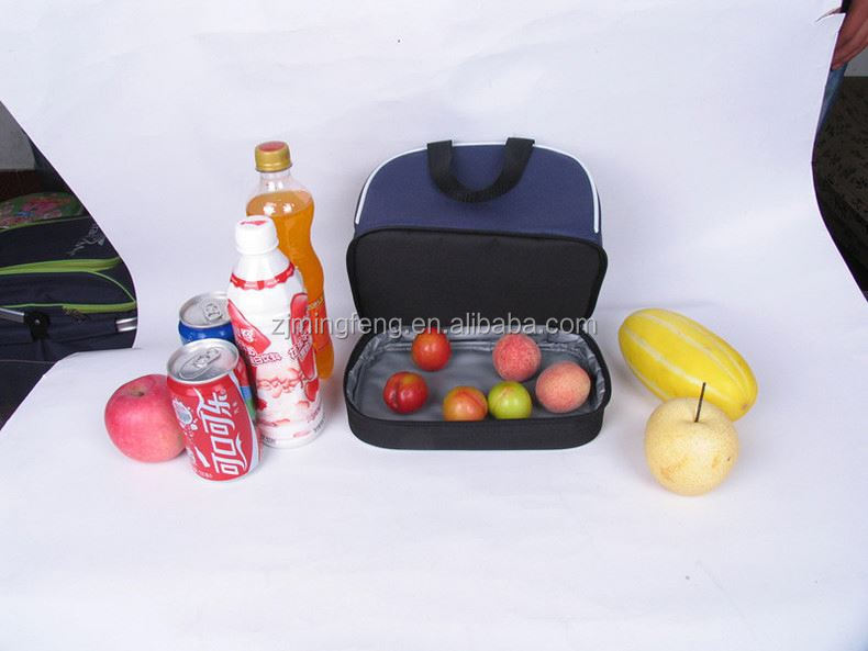 cooler bag/ disposable cooler bags for food/ insulated beer bottle holders