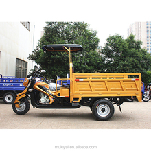 200cc Open Body Tricycle Cargo Food 3 Wheel Motorcycle