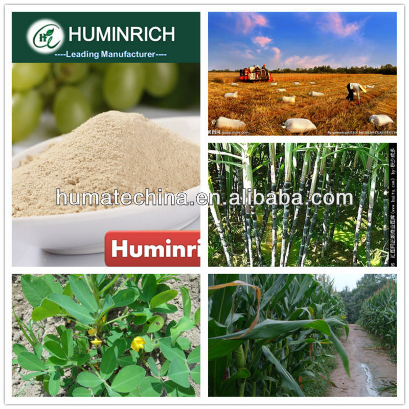 Huminrich Shenyang Plant and Animal amino acid complex