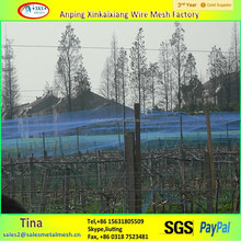 Protecting agricultural plastic bird nets for catching bird