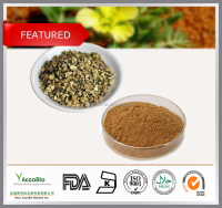 Top Quality Tribulus Terrestris powder/ Tribulus Terrestris Extract/ Saponins 90%