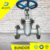 API fast delivery class 150 class 500 cast steel cs gate valve